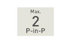 PinP/最大2系統